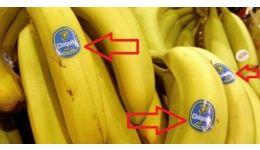 Read more: Abțibildurile dezvăluie calitatea bananelor