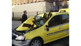 Read more: Argeș. Taxi strivit de plugul unui tractor