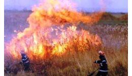 Read more: Pompierii avertizează: Atenție la focul deschis!