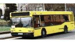 Read more: Pitești: Programul de circulaţie al autobuzelor în perioada Paștelui