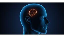 Read more: Iată cum verificați dacă aveți creierii spălați!