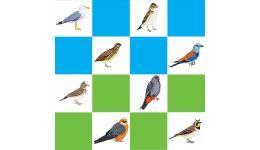 Read more: SENZAȚIONAL ! Păsările protejate prin rețeaua Natura 2000 vor fi monitorizate   printr-un program național