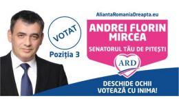 Read more: Alegeri în Argeș. Un nou proiect marca Mircea Andrei: LEGEA CĂLDURII