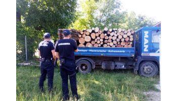 f_350_200_16777215_00_images__2017_04aprilie_Jandarmi-camion-lemne-confiscat.jpeg