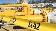 Ministrul Economiei amenință furnizorii de gaze naturale cu limitarea adaosurilor comerciale
