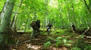 Romsilva nu-ți va mai păzi pădurea gratis, timp de 6 luni, după punerea în posesie