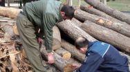 Confiscare de material lemnos la Popești (Vâlcea)