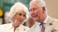 Nu le poţi spune proştilor că virusul îi iubeşte. Dar prinţul Charles și Camilla lui ?