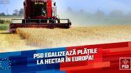 PSD egalizează plățile la hectar în Europa