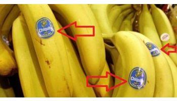 f_350_200_16777215_00_images_6news335_banane_1.jpg